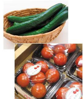 旬の野菜コーナー
